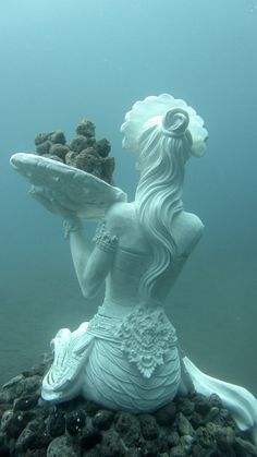 From ancient lost civilisations to modern conservation art, explore the world's most breathtaking (and quirky) underwater statues and sculptures. Underwater Sculpture, Underwater City, Abstract Sculpture, Mermaid Sculpture, Sculpture Projects, Sculpture Ideas, Stone Sculpture, Sculpture Clay, Poseidon