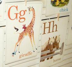 Animal ABC Flashcards - 5x7 - Set of 26. $19.99, via Etsy. http://www.etsy.com/listing/61584710/animal-abc-flashcards-5x7-set-of-26#