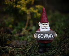 Go away....grumpy gnome
