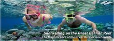 Snorkelling on the Great Barrier Reef!   Google Image Result for http://www.quicksilver-cruises.com/images/content/headers/snorkelling.jpg