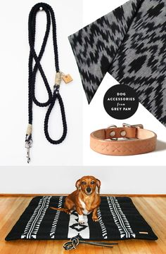 Dog accessories by Grey Paw, including rope leashes, natural leather collars, ikat neckerchiefs, and Pendleton patterned beds | Product selection by Door Sixteen