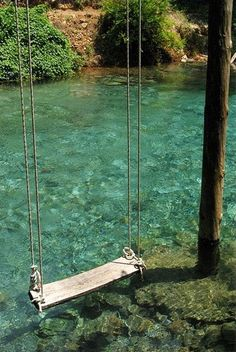 Calling all handymen to build us a swing over the water