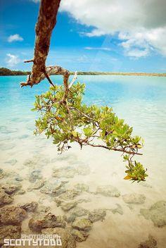 No Man's Bay, Tobago