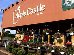 Market, Orchard, Fall Festivals, Tractor Rides, etc. in New Wilmington, PA