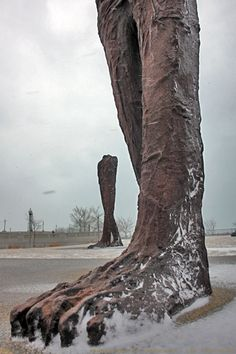 Magdalena Abakanowicz :: Agora, large set of headless sculptures at Grant Park, Chicago [photography by Evil Vince]