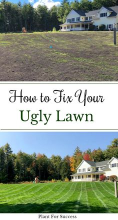 You can completely fix your lawn by core aerating and overseeding, fertilizing, and top dressing your lawn. Top dressing your lawn will make grass seed germination much easier and it's one of the best things you can do if you have lawn problems. #lawncare #lawnfertilizer