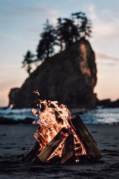 To have a bonfire on the beach