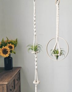 A simple and classic air plant hanger set, easy to hang, fit in with any home decor  #airplant #airplants #airplantlove #airplantholder #airplanthanger #airplantsofinstagram #tillandsiahanger #airplantdecor #airplantdesign # #macrameplanthanger #macramelove #macramemaker #macramesupply #hangingplanter #planthanger #bohodecor #bohemian #macramewallhanging Indoor Plant Hangers, Wall Plant Hanger, Hanging Air Plants, Hanging Planters, Plant Wall, Macrame Plant Hanger Patterns, Macrame Plant Holder, Air Plant Display, Plant Decor