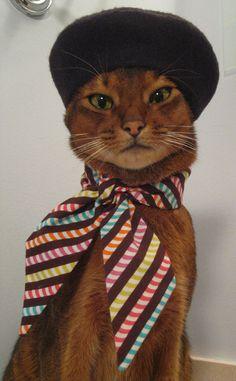 Black Felt Beret by CatAtelier on Etsy, aka: STYLISH CAT!