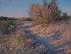 Five O'clock Shadows by Barbara Jaenicke Pastel ~ 9 x 12