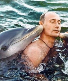 Vladimir Putin swimming with dolphins.