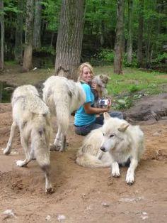 Zoologist Job Description | Wildlife Biologist Wildlife Biologist Pinterest Wildlife