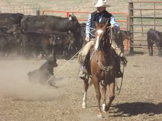 5 Year Old Ranch / Cutting Gelding With ME for Sale - For more information click on the image or see ad # 33731 on www.RanchWorldAds.com