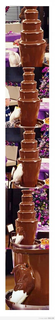 This would be me if I were a bird...