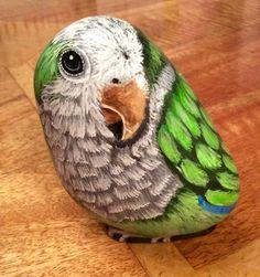 Parrot painted rock
