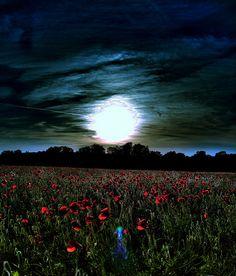 big meadow moon