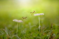 Morning by Andan Saputra on 500px