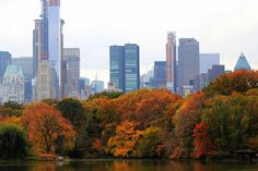 Fall in Central Park, Manhattan, New York