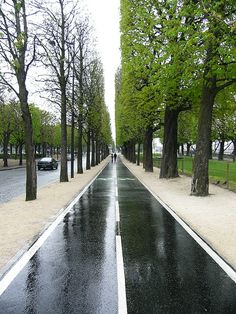 Cycle path, Paris.