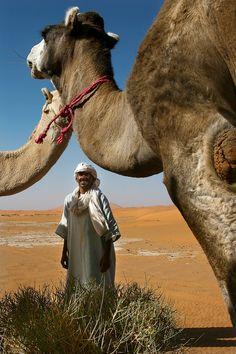 Sahara oasis . Morocco