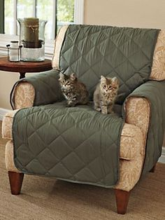 Ultimate Furniture Protectors -Protect your sofa loveseat and chair from pet hair and spills | Solutions