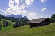 Die Seiseralm mit dem Schlern, dem Petz, der Euringerspitze und der Santnerspitze im Hintergrund. :-) :-) :-)