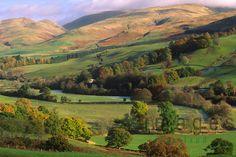 autumn landscape | Autumn landscape Annandale looking up to Moffat Hills Scotland | South ...