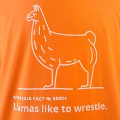 Wikipedia Store - Llamas like to wrestle