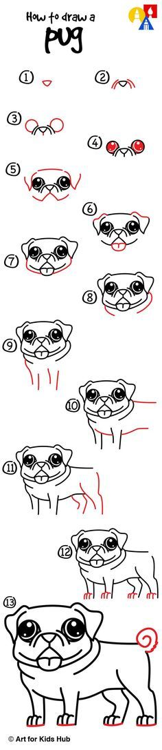 Don't know how to draw a pug? Well now you know