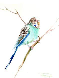 Parakeet original watercolor painting 12X 9 in by ORIGINALONLY