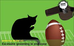 If cats and dogs refereed the Super Bowl: Cats will clean everywhere … except their own bottoms. — #veterinary dvm360