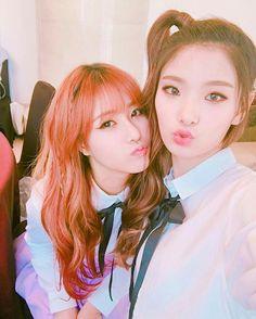 Matilda, kpop, girls grup, boxmedia, Haena and Saebyeol, Leader and Maknae, cute, #matilda #kpop #boxmedia #haena #saebyeol #matildafanpage #girlsgrup Spring Day, Fan Page, Snsd, Girls Generation, Matilda, K Idols, Girl Group, Beautiful People, Cute