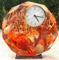 Lucite Sea Shell Starfish Ocean Seashell Sands Of Time