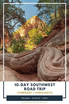 This 10-day southwest road trip USA itinerary is perfect for those who want to see the best parts the southwest has to offer. This itinerary takes you through some of the best national parks, hikes, and incredible views in Nevada, Arizona, and Utah. This is an American road trip you'll remember for years to come. The perfect itinerary for a 10-day road trip in the American Southwest.| Southwest Road Trip | Southwest Road Trip Map | American Road Trip | Road Trip Destinations | Road Trip USA