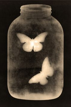 "Saatchi Online Artist: Michael C. Mendez; Photogram Photography ""The Killing Jar"""