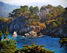Point Lobos, CA - one of my favorite places in the world!!!