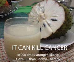 """?? """"10000 times stronger killer of CANCER than Chemo"""".. share it.. can save many lives, fill up hopes and build confidence in the patients...    The Sour Sop or the fruit from the graviola tree is a miraculous natural cancer cell killer 10,000 times stronger than Chemo.   Read more > https://www.facebook.com/photo.php?fbid=559114267433944=a.508121219199916.120948.100000061262921=1    Follow Chef John & Anne > http://pinterest.com"""