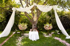 Romantic outdoor wedding altar, and love the lush flowers and fabric draping!!