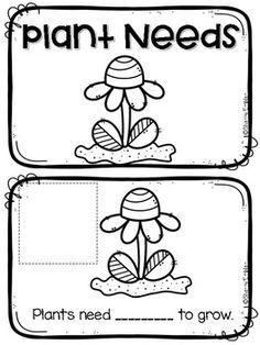 Needs of plants kindergarten worksheets #preschool #