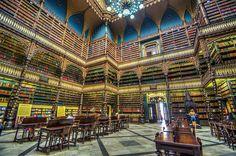 São verdadeiros santuários da sabedoria e entre elas estão 3 portuguesas e 1 brasileira. Descubra as 20 bibliotecas mais bonitas do mundo.