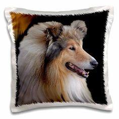 3dRose Rough Collie Portrait, Pillow Case, 16 by 16-inch