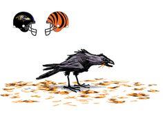 Ravens v Bengals