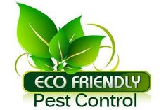 Truly Green Home Pest Control Non Toxic Natural Organic Safe for Children and Pets 16 oz >>> Check this awesome product by going to the link at the image. (This is an affiliate link) Mattress Cleaner, Bed Cleaner, Mattress Cleaning Service, Cleaning Services, Green Pest Control, Rid Of Bed Bugs, Pest Control Services, Steam Cleaning, Removal Services