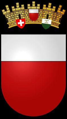 Blason de la commune de Lausanne. District de Lausanne. Lausanne est une ville Suisse située sur les rives du lac Léman. Elle est la quatrième ville du pays en termes de population, après Zurich, Genève et Bâle. Elle est la capitale et plus grande ville du canton de Vaud et le chef-lieu du district de Lausanne.
