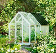 Bod och växthus i ett!