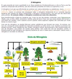 il nitrogenio