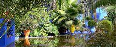 Zeker zien tijdens een stedentrip Marakech: Jardin Majorelle, heerlijk rustig en oh zo kleurrijk.