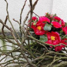#flowerpower #pink #peonies #wood #colour #pfingstrose #rosa #flower #blumen #strauß #bouquet #cologne #flowerart #instaflowers #blumenmädchenkoeln #gardenflowers #flowershop #cgn