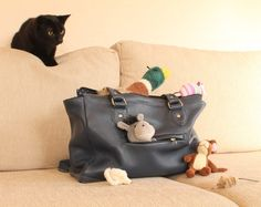 The Little Leather Co is offering discounts on handbags for Bruce fans - visit http://www.brucethecat.co.nz/blog/good-mews-bad-mews for more info. Visit the Little Leather Co website here: http://www.thelittleleatherco.co.nz/ #kitten #cat #handbag #fashion #leather #cute #discount #promotion #brucethecat