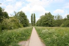 Wandelpad Beatrixpark, Lunetten Utrecht. Personal Image, Any Images, Utrecht, Pathways, Benches, Gates, Countryside, Sidewalk, Stairs